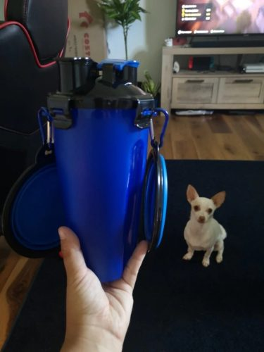 little-dog-with-blue-2-in-1-bottle