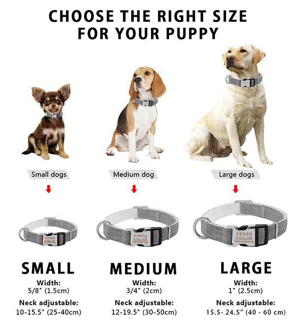 engraved dog collar size chart