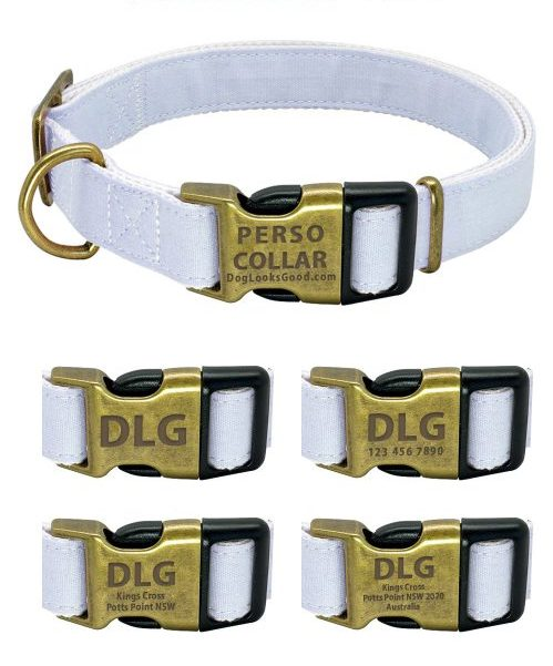 personalized dog collar royal engrave style