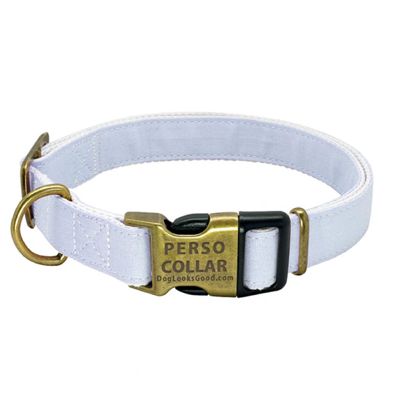 personalized dog collar cooper gold white