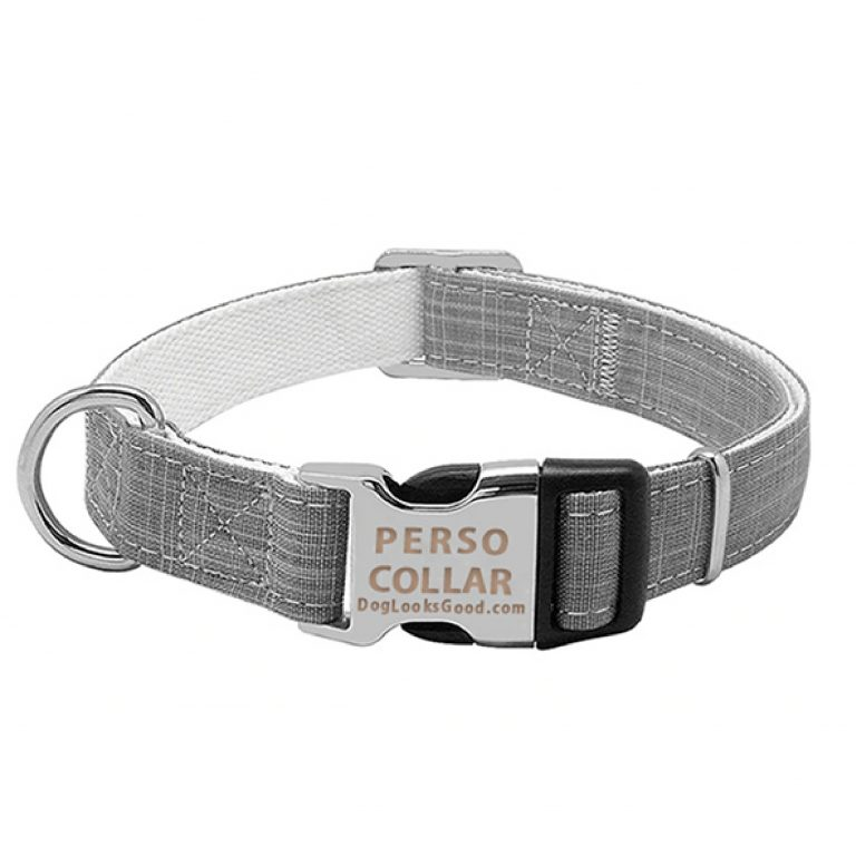 personalized dog collar gus gray