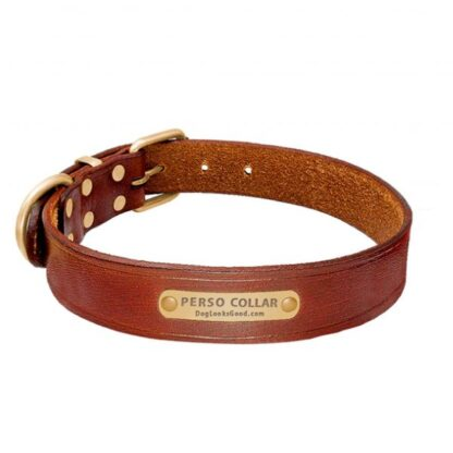 personalized dog collar classic louie