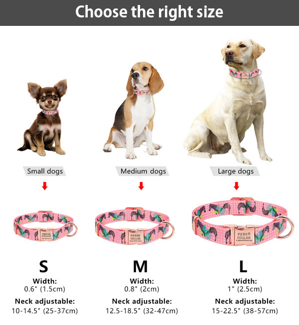 perso rose collar size chat