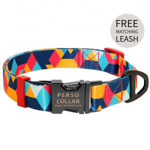 personalized dog collar with low poly graphics