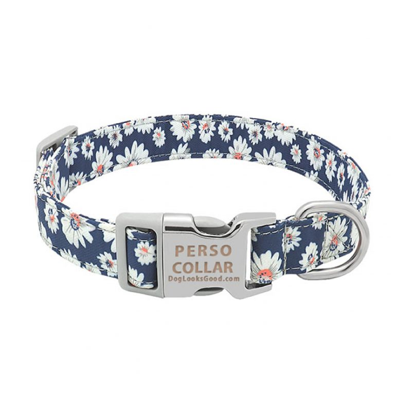 personalized dog collar daisy blue