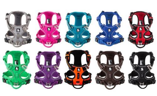 Diesel dog harness all colors variations