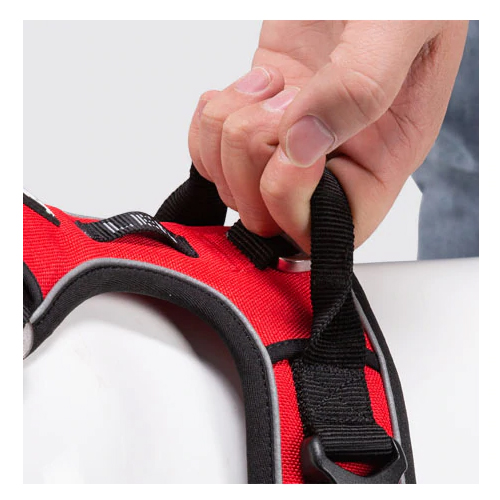 Diesel dog harness features2