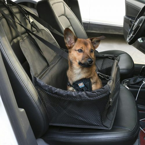 dog car carrier with dog example