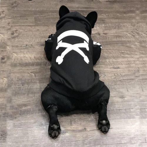 Dog sweater black