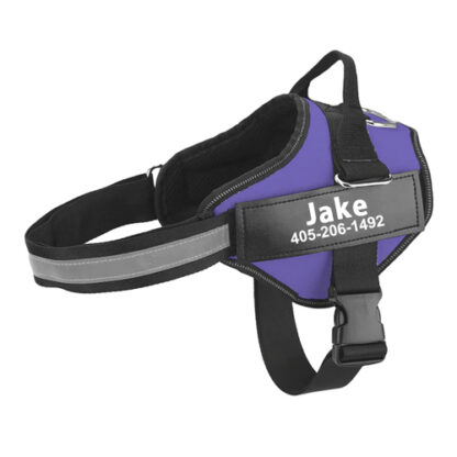 Dog harness Julius k9 purple