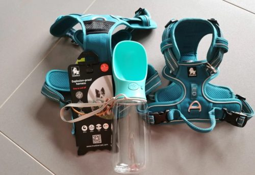boxer dog product diesel review photo2