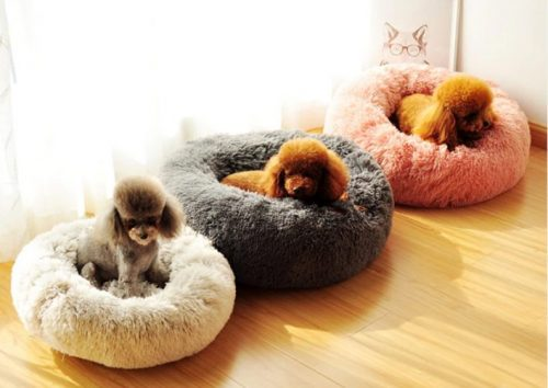 Dog cloud bed example