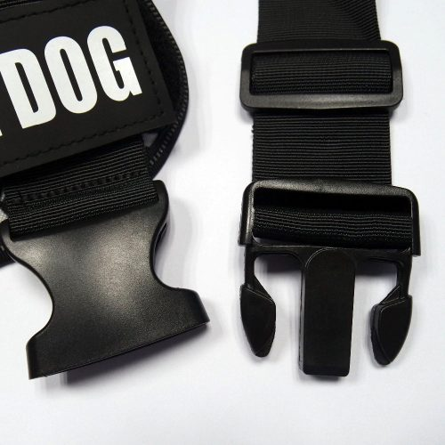 Jules dog harness buckle