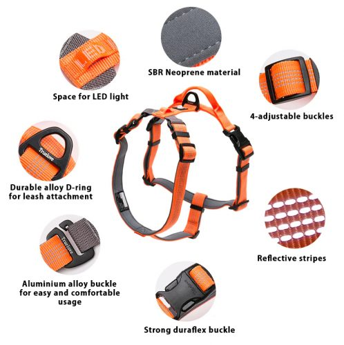 Otto dog harness features