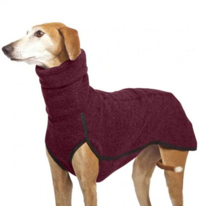 gordy dog clothing winter collection red photo