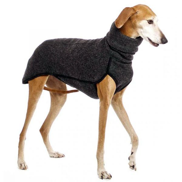 gordy dog clothing winter collection gray