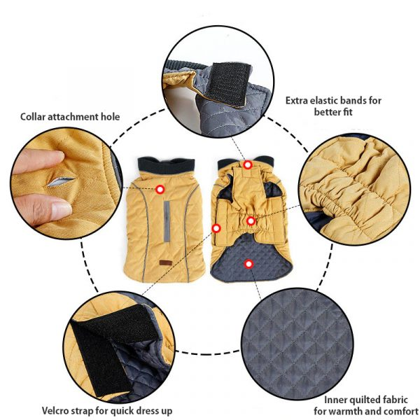 Stella winter coat for dogs features