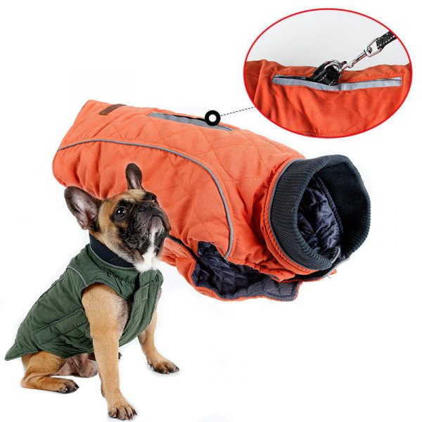 stella winter coat for dogs image