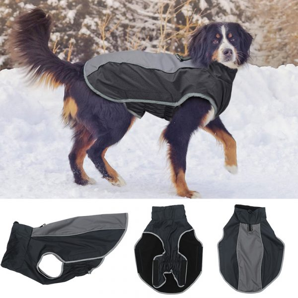 Aster jacket for dog large breed coat for winter