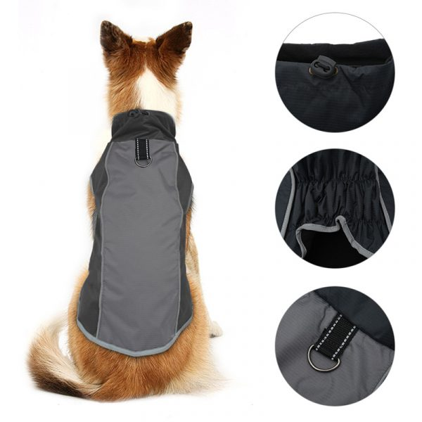 Aster best winter coat for large dogs photo